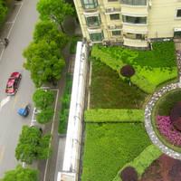 상하이 길거리 풍경